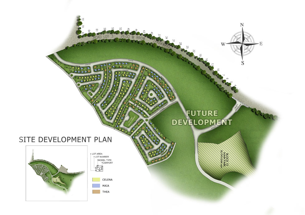 plan for the development of future